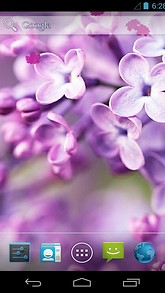 Spring Purple Flowers Live Wallpaper