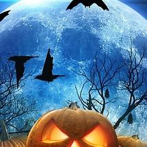 Halloween HD Live Wallpaper