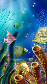 Aquarium fish Live Wallpaper free