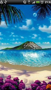 Tropical Beach Live Wallpaper