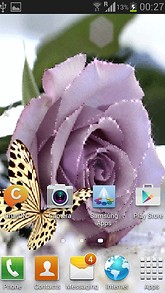Purple Rose Butterfly LWP
