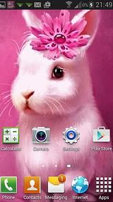 Bunny Queen Live Wallpaper