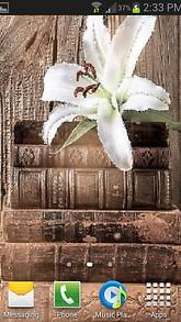 Flower On Book LWP