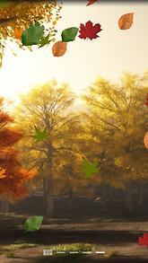 Colorful Autumn Live Wallpaper