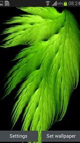 Green Feather Live Wallpaper