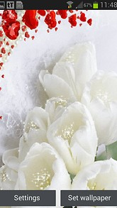 White Flower Hearts LWP