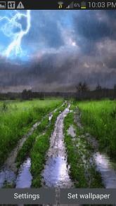 Rainy Field Live Wallpaper