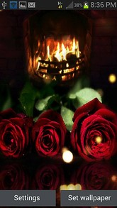 Fireplace Roses LWP