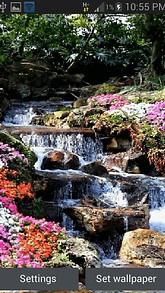 Forest Flower River LWP