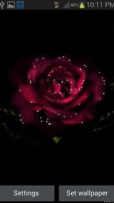 Rose In Dark LWP