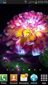 Magic Flower Light LWP