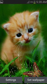 Cute Cat Butterfly LWP