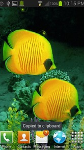 Yellow Fishes Bubble LWP