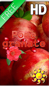 Fruit Pomegranate Live Wallpaper